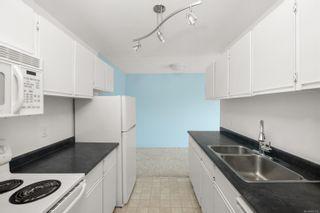 Photo 8: 312 1655 Begbie St in : Vi Fernwood Condo for sale (Victoria)  : MLS®# 885110