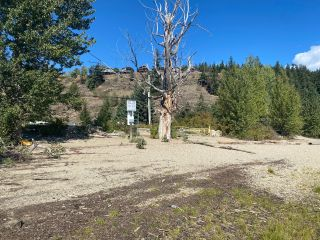 Photo 21: #183 2633 Squilax Anglemont Road: Lee Creek Vacant Land for sale (North Shuswap)  : MLS®# 10240390