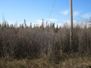 Photo 5: NW 24-54 RR 131: Niton Junction Rural Land for sale (Edson)  : MLS®# 32590