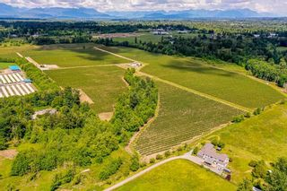 Photo 6: 21.44AC 240 STREET in Langley: Langley City Agri-Business for sale : MLS®# C8038637