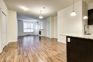 """Photo 14: 206 265 ROSS Drive in New Westminster: Fraserview NW Condo for sale in """"GROVE AT VICTORIA HILL"""" : MLS®# R2572581"""