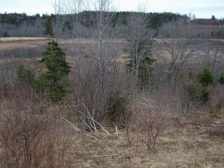 Photo 2: LOT PLEASANT VALLEY in Yarmouth: County Hwy 340 Vacant Land for sale : MLS®# 4868156