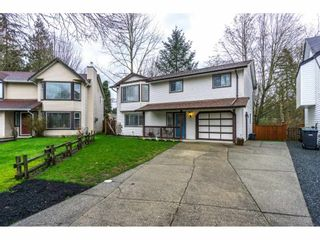 """Photo 1: 2704 274A Street in Langley: Aldergrove Langley House for sale in """"SOUTH ALDERGROVE"""" : MLS®# R2153359"""