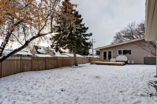 Photo 29: 3404 Lane Crescent SW in Calgary: Lakeview Detached for sale : MLS®# A1058746