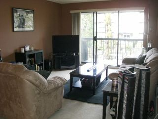 """Photo 3: 203 340 NINTH Street in New Westminster: Uptown NW Condo for sale in """"PARK WESTMINSTER"""" : MLS®# V1047319"""