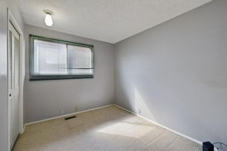 Photo 19: 2719 41A Avenue SE in Calgary: Dover Detached for sale : MLS®# A1132973