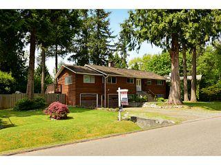 "Photo 42: 5717 137A Street in Surrey: Panorama Ridge House for sale in ""Panorama Ridge"" : MLS®# F1441288"