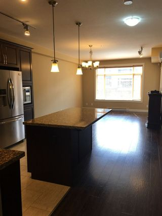 Photo 6: 356 8258 207A Street in Langley: Willoughby Heights Condo for sale : MLS®# R2485556