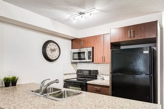 Photo 19: 3203 279 Copperpond Common SE in Calgary: Copperfield Apartment for sale : MLS®# A1117185