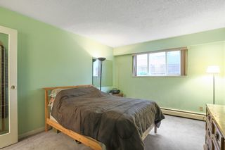 """Photo 11: 103 12096 222 Street in Maple Ridge: West Central Condo for sale in """"Canuck Plaza"""" : MLS®# R2521052"""
