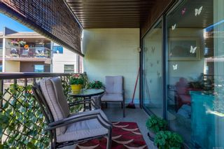 Photo 11: 213 585 Dogwood St in : CR Campbell River Central Condo for sale (Campbell River)  : MLS®# 876595