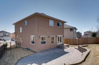 Photo 46: 335 Panorama Hills Terrace NW in Calgary: Panorama Hills Detached for sale : MLS®# A1092734