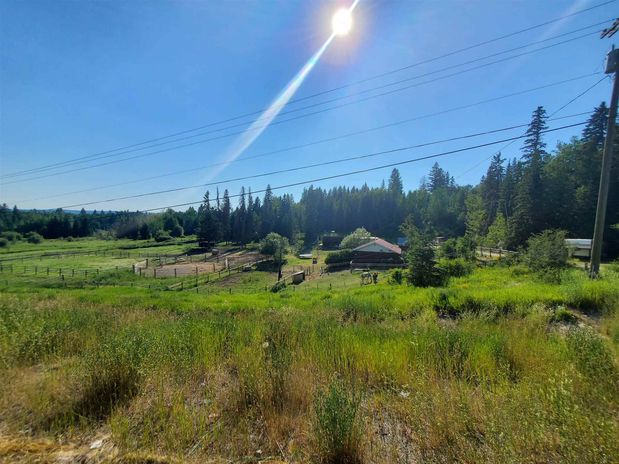 Main Photo: 3238 S 97 Highway in Quesnel: Quesnel Rural - South House for sale (Quesnel (Zone 28))  : MLS®# R2596794