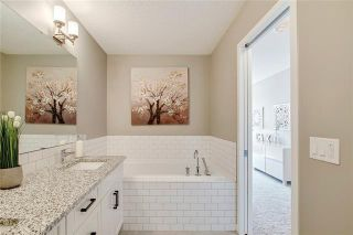 Photo 22: 393 MASTERS Avenue SE in Calgary: Mahogany Detached for sale : MLS®# C4302572