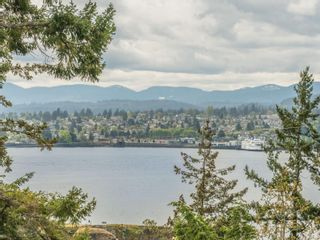 Photo 60: 3339 Stephenson Point Rd in : Na Departure Bay House for sale (Nanaimo)  : MLS®# 874392