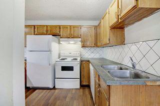 Photo 9: 152 Castlebrook Rise NE in Calgary: Castleridge Semi Detached for sale : MLS®# A1128944