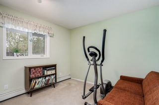 Photo 13: . 2109 Hawksbrow Point NW in Calgary: Hawkwood Apartment for sale : MLS®# A1116776