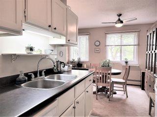 Photo 8: 206 10826 113 Street NW in Edmonton: Zone 08 Condo for sale : MLS®# E4264164