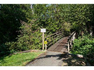 """Photo 20: 14355 32B Avenue in Surrey: Elgin Chantrell House for sale in """"Elgin Wynd"""" (South Surrey White Rock)  : MLS®# F1449476"""