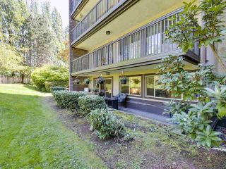 """Photo 20: 108 9847 MANCHESTER Drive in Burnaby: Cariboo Condo for sale in """"Barclay Woods"""" (Burnaby North)  : MLS®# R2580881"""