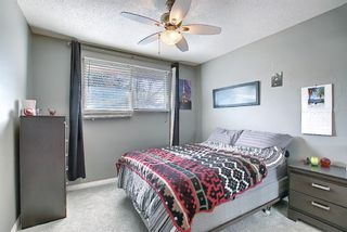 Photo 16: 12039 Candiac Road SW in Calgary: Canyon Meadows Detached for sale : MLS®# A1096218