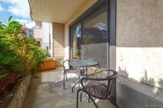 Photo 15: 101 614 Fernhill Pl in VICTORIA: Es Rockheights Condo for sale (Esquimalt)  : MLS®# 803205