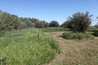 Photo 10: SE ¼ 30-19-28 W4M: Rural Foothills County Residential Land for sale : MLS®# A1069509