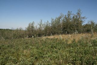 Photo 5: 4 VIEW Place in Rural Stettler No. 6, County of: Rural Stettler County Land for sale : MLS®# A1066068