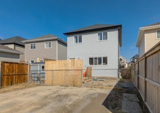 Photo 43: 189 COPPERPOND Road SE in Calgary: Copperfield Detached for sale : MLS®# A1091868