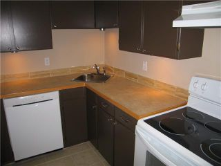 Photo 5: 307 316 CEDAR Street in New Westminster: Sapperton Condo for sale : MLS®# V858391