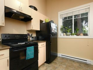 Photo 40: 6830 East Saanich Rd in : CS Saanichton House for sale (Central Saanich)  : MLS®# 873148