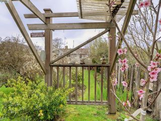 Photo 18: 2859 Colquitz Ave in VICTORIA: SW Gorge House for sale (Saanich West)  : MLS®# 783499