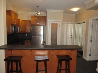 Photo 16: 329 10121 80 Avenue in Edmonton: Zone 17 Condo for sale : MLS®# E4255025