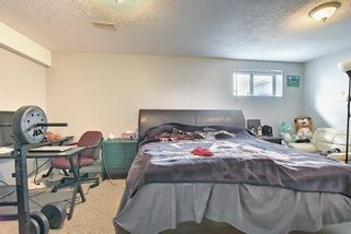 Photo 30: 142 Martindale Boulevard NE in Calgary: Martindale Detached for sale : MLS®# A1111282
