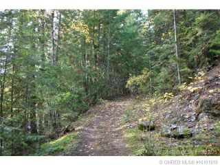 Photo 10: 23 Vickers Trail in Anglemont: Anglemont Estates Vacant Land for sale (North Shuswap)  : MLS®# 10131535