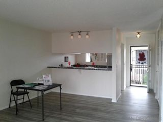 Photo 3: CHULA VISTA Condo for sale : 1 bedrooms : 490 FOURTH AVENUE #34