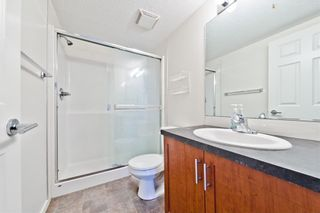 Photo 5: #3301 279 COPPERPOND CM SE in Calgary: Copperfield Condo for sale : MLS®# C4128501