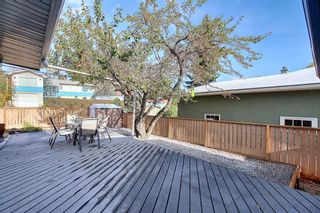 Photo 31: 150 Cornwallis Drive NW in Calgary: Cambrian Heights Detached for sale : MLS®# A1122258