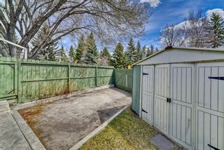 Photo 5: 776 Willamette Drive SE in Calgary: Willow Park Detached for sale : MLS®# A1102083