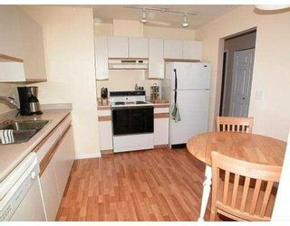 Photo 9: 401 1215 PACIFIC Street in Coquitlam: North Coquitlam Condo for sale : MLS®# V719136