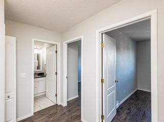 Photo 24: 186 Coral Springs Boulevard NE in Calgary: Coral Springs Detached for sale : MLS®# A1146889