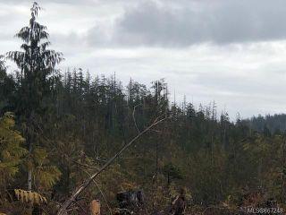 Photo 4: 1401 Alaska Pine Rd in : PA Ucluelet Land for sale (Port Alberni)  : MLS®# 867248