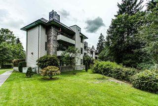 "Photo 19: 201 1150 DUFFERIN Street in Coquitlam: Eagle Ridge CQ Condo for sale in ""GLEN EAGLES"" : MLS®# R2072453"