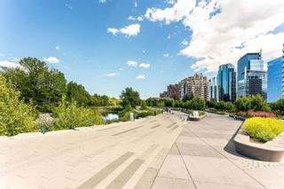 Photo 24: 460 310 8 Street SW in Calgary: Eau Claire Apartment for sale : MLS®# A1022448