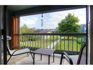 "Photo 1: 209 3411 SPRINGFIELD Drive in Richmond: Steveston North Condo for sale in ""BAYSIDE COURT"" : MLS®# V908427"