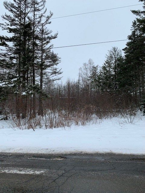 Main Photo: Parcel MAO-1 Long Point Road in Burlington: 404-Kings County Vacant Land for sale (Annapolis Valley)  : MLS®# 202100989