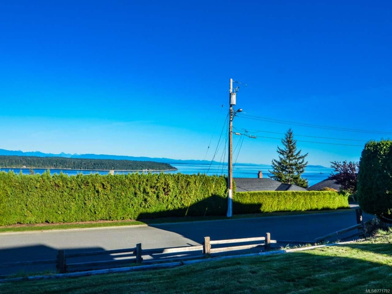 Photo 50: Photos: 451 S McLean St in CAMPBELL RIVER: CR Campbell River Central House for sale (Campbell River)  : MLS®# 771782