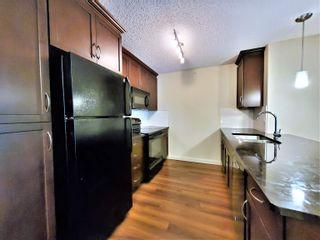 Photo 11: 438 6076 SCHONSEE Way in Edmonton: Zone 28 Condo for sale : MLS®# E4260047