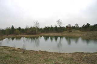 Photo 6: 475547 County Road 11 in Amaranth: Rural Amaranth Property for sale : MLS®# X4667613