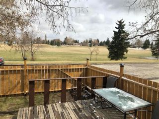 Photo 17: 3930 Doverdale Crescent SE in Calgary: Dover Row/Townhouse for sale : MLS®# A1098449